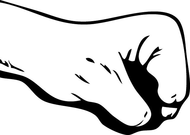 gesto ruky